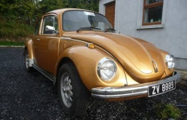 Volkswagen Beetle VW 1303 Coupe