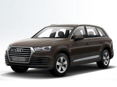 Audi Q7 4M Closed Off-Road Vehicle