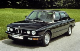opony do BMW M5 I [1984 .. 1988] Saloon (E28)