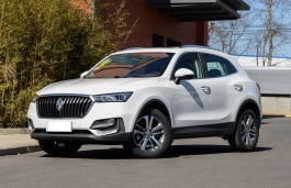 Borgward BX5 wheels and tires specs icon