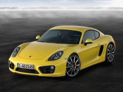 Porsche Cayman picture (2013 year model)