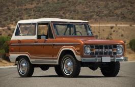 ícone de especificações de roda e pneus de Ford Bronco