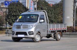 Jinbei T30 Truck