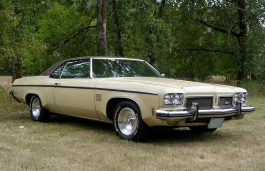 Oldsmobile 88 picture (1973 year model)